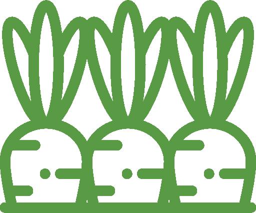 astuces sur le jardin Bouchet Freres producteur local Cruseilles