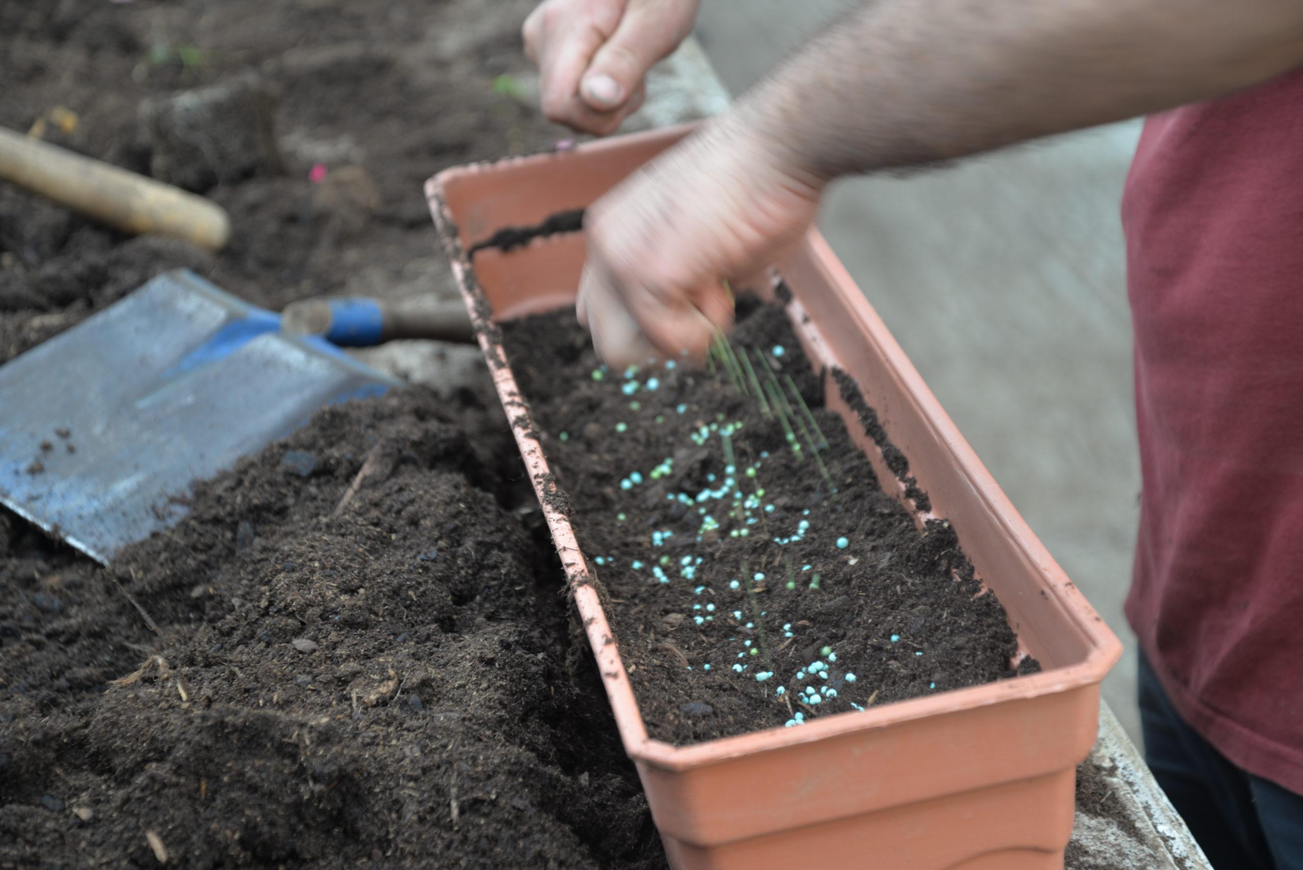 engrais jardinières Bouchet Freres horticulteurs