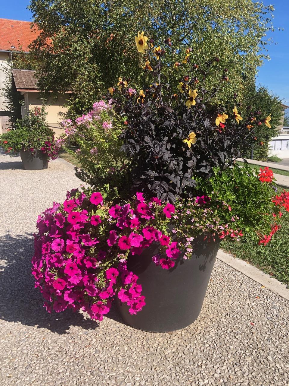 commune Présilly fleurs Bouchet Freres