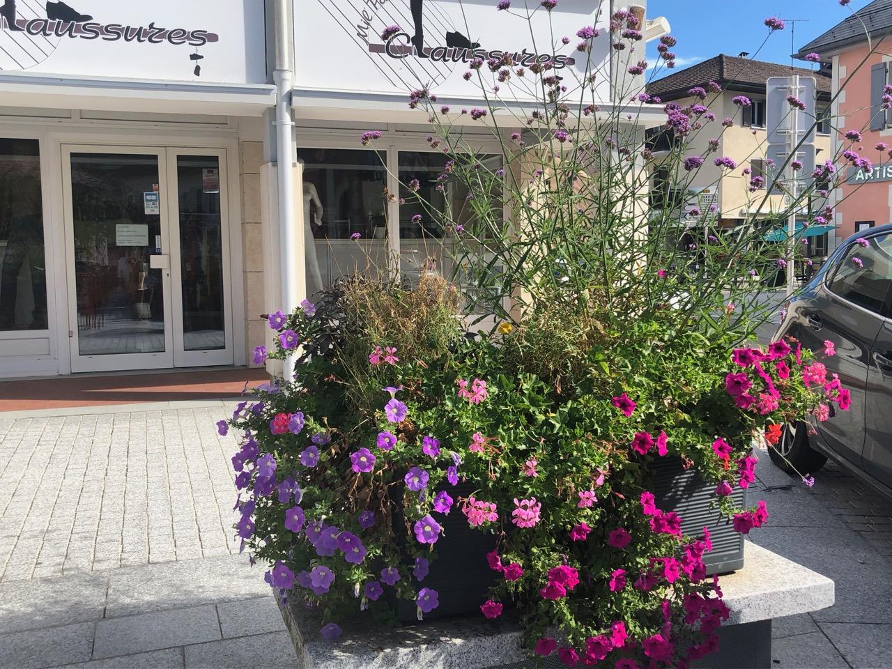 commune Cruseilles fleurs Bouchet Freres