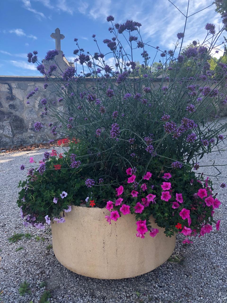 commune Allonzier la Caille fleurs Bouchet Freres