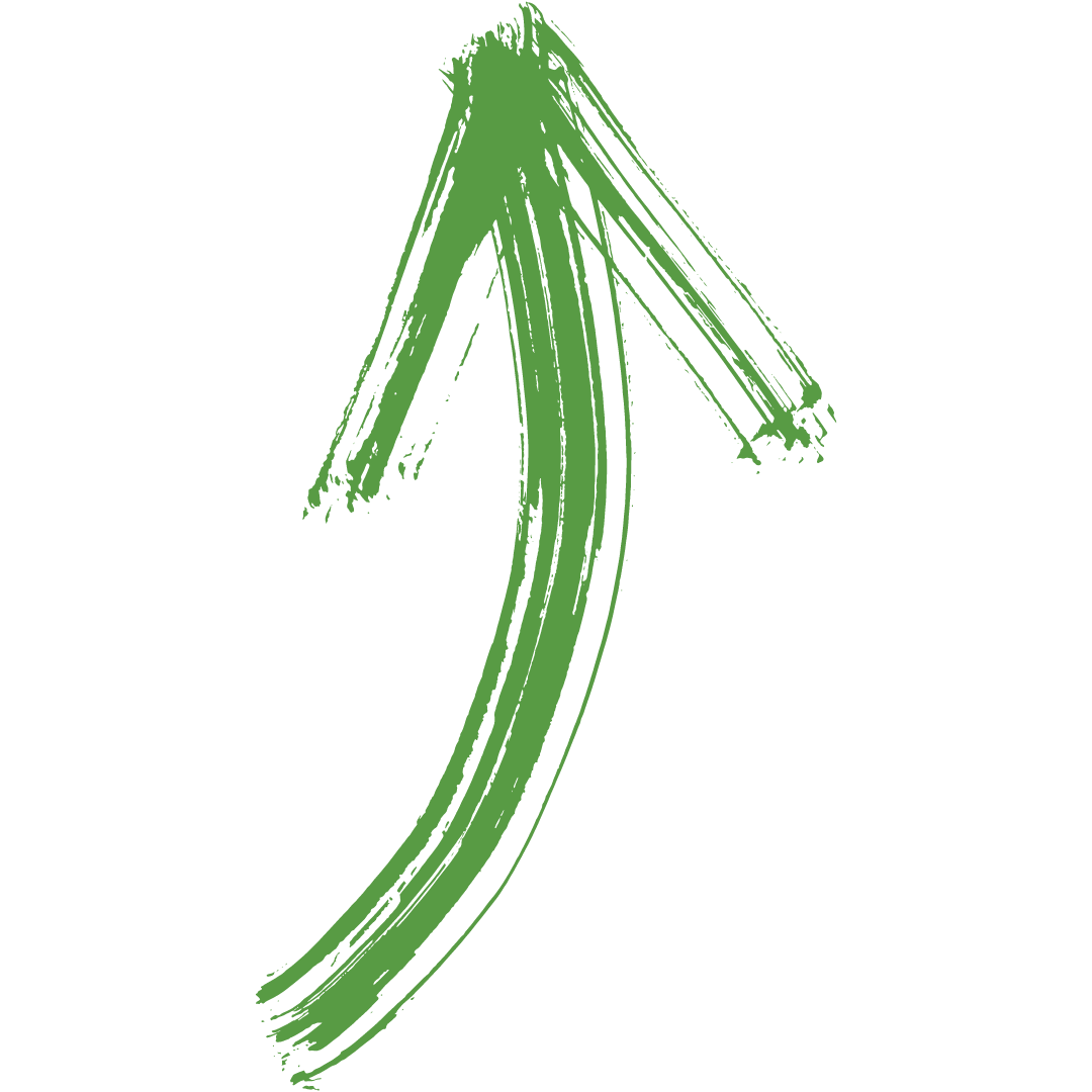 Légumes de saison, mois de mars, radis, mâche, épinard, celeri-rave, poireau, patate, betterave, navet, carotte Bouchet Freres maraichers producteur local Cruseilles Haute Savoie