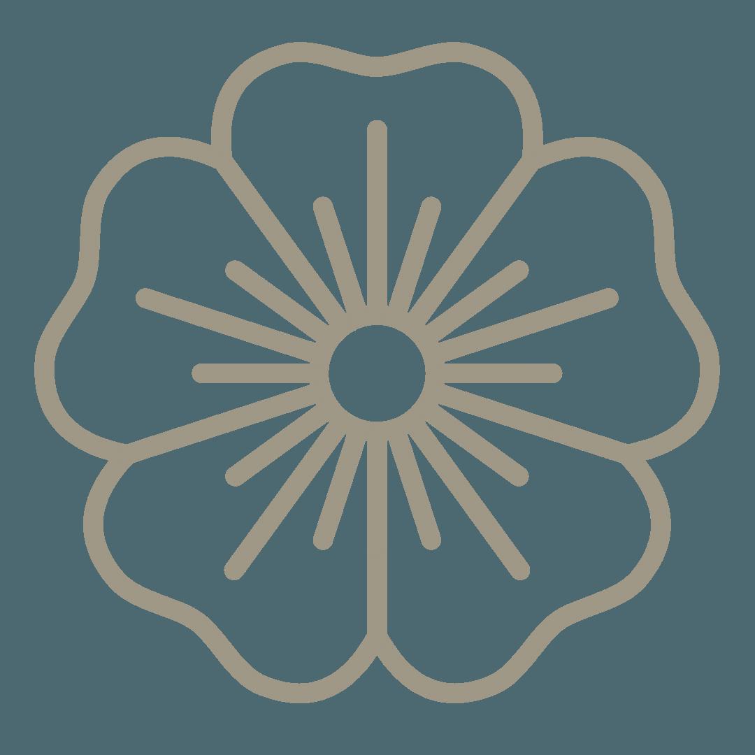 large choix de fleurs et plants de légumes, pour carré potager, jardin et jardinière , Bouchet Freres maraichers horticulteur producteur local Cruseilles Haute Savoie