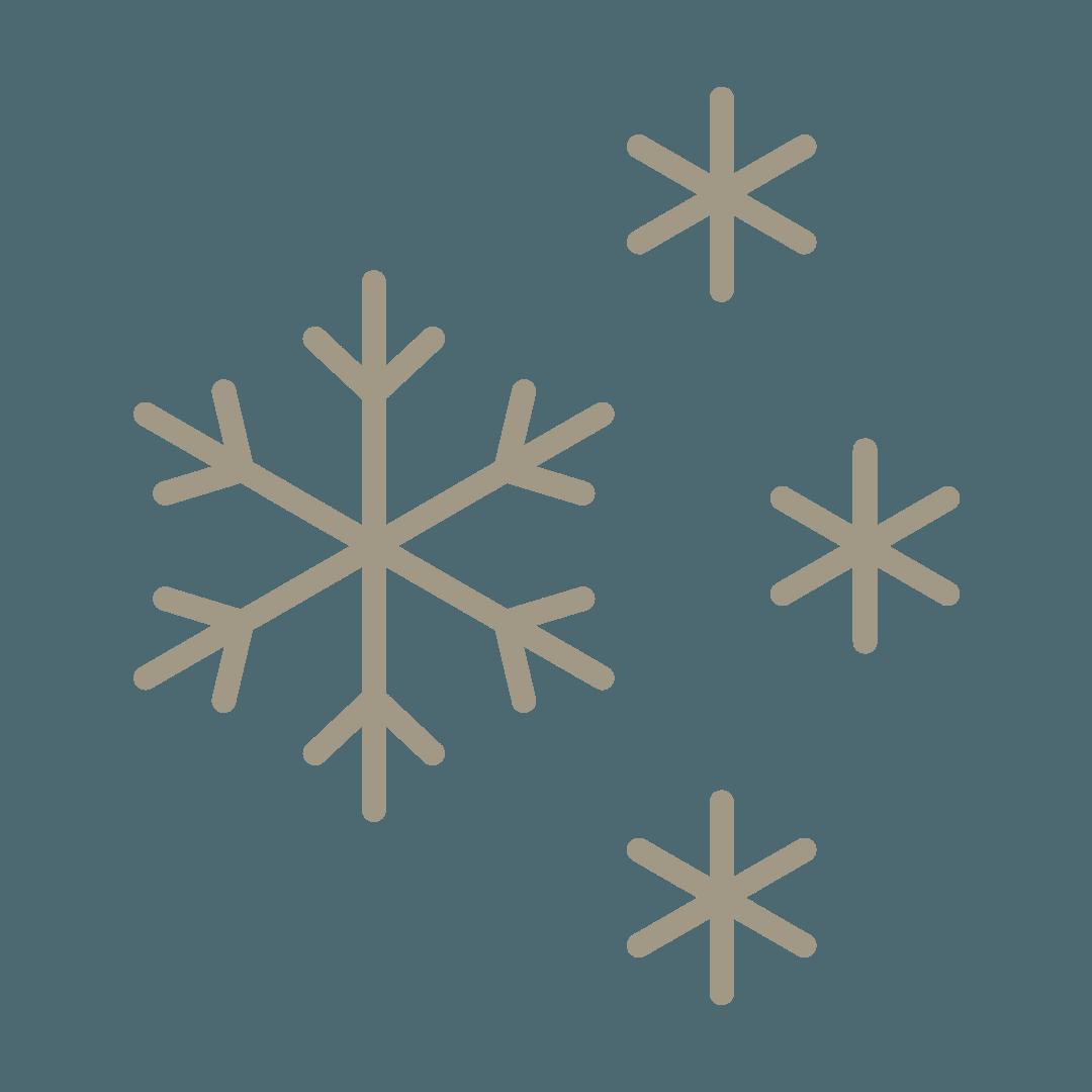 Sélection de graines et variétés robustes et rustiques , Bouchet Freres maraichers horticulteur producteur local Cruseilles Haute Savoie