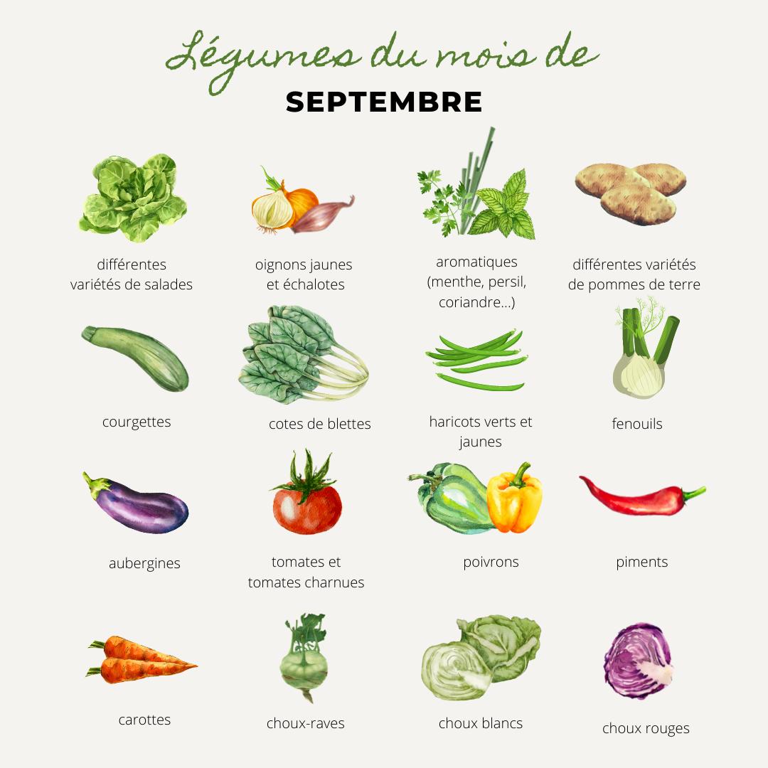 liste de légumes de saison, légumes de septembre, salades, battavia, feuilles de chene, scarole, oignons, oignons jaunes, échalotes, menthe, persil, ciboulette, basilic, patates, pomme de terre, gourmandine, marabel, chair ferme, chair tendre, courgette, courgettes, cotes de blettes, blette, poirée, haricots verts, haricots jaunes, fenouil, aubergines, tomates, tomates charnues, tomates coeur de boeuf, tomates grappes, tomates cerises, poivrons, poivrons jaunes, piments, carottes, carottes d'hiver, carottes des sables, choux-raves, choux, choux blanc, choux rouge, famille des choux,Bouchet Freres, maraicher, producteur local, Cruseilles, Annecy, Haute Savoie